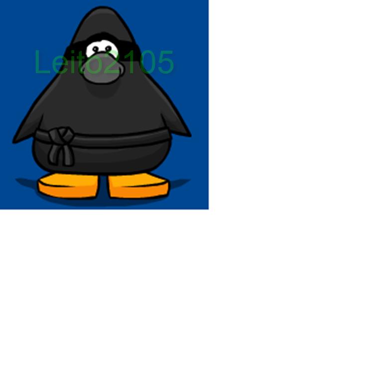 miau-ninja
